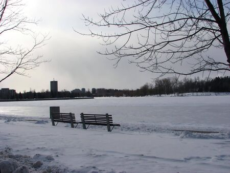 Winter Benches photo