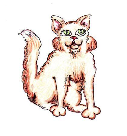kahverengi: Brown Cat