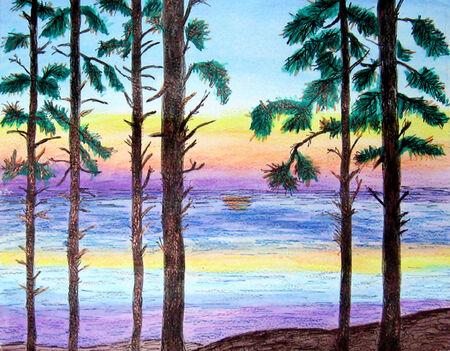 sunrises: Woodsy Sunset