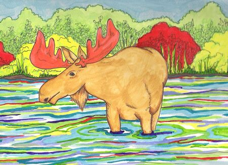 Moose in Lake Banco de Imagens - 13246183