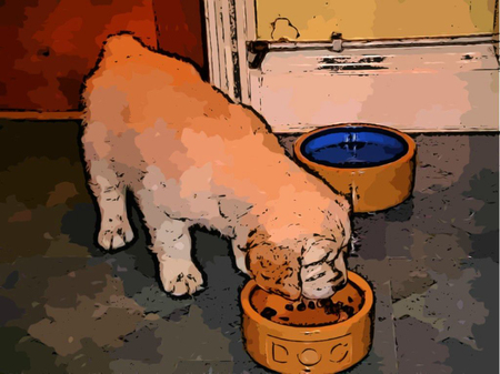 Dog Eating dog good Illustration