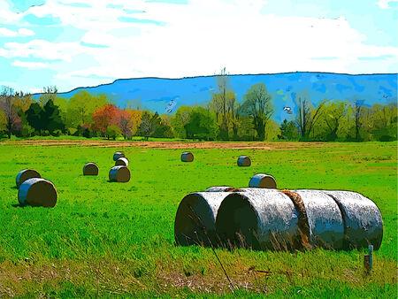 俵: 青い空と Lanscape 牧草の干し草の俵  イラスト・ベクター素材