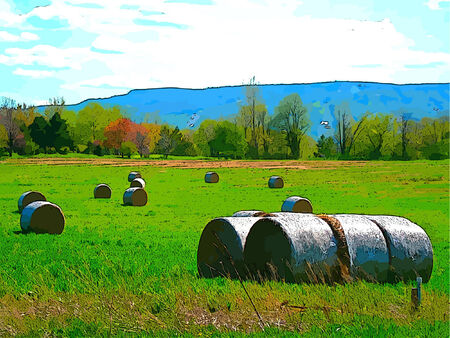 Bales of Hay in a Lanscape Pasture with a Blue Sky Ilustração