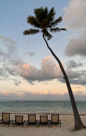 Deckchairs under palmtree on caribbean beach at sunset Stock Photo