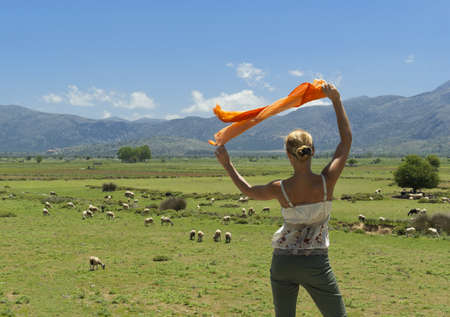 Attractive woman looking at flock of sheeps on green meadow. Lasithi Plateau. Greece. Crete