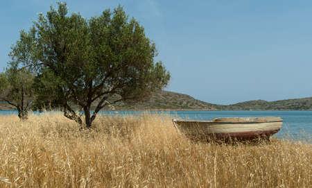 Fishing boat on Mediterranean shore near olive tree. Background. Greece. Stock Photo
