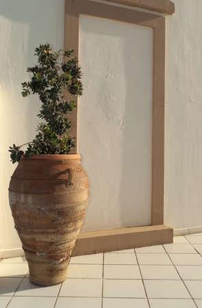 Greek amphora with olive tree near decorative wall