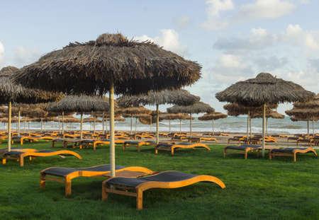 Luxury sunbeds on grass near Mediterranean sea at sunset Stock Photo