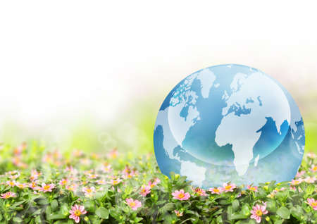 Globe with a field of cheerful  flowers and green grass photo