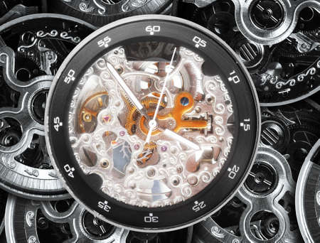 regulate: gears and mainspring in the mechanism of a pocket watch
