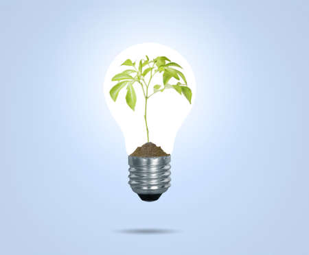inefficient: Incandescent light bulb with plant as the filament