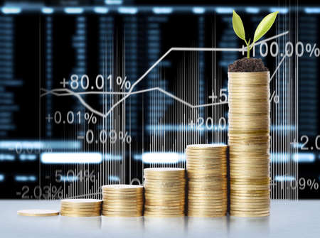 finance background: plant on gold coins and graph them isolated on white background Stock Photo