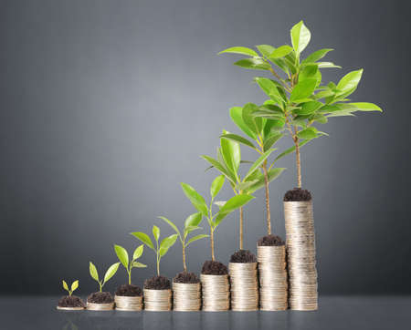 growth business: plant on gold coins and graph them