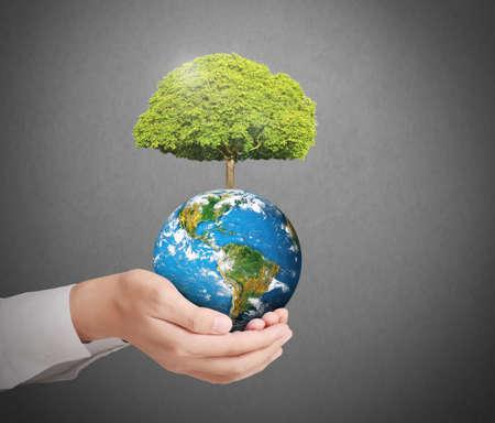 planeta verde: Tierra en la mano humana