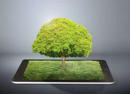 芝生のフィールドとそれにツリーのタブレット コンピューター 写真素材
