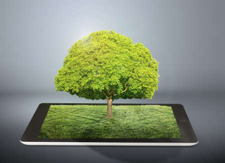tablet computer with grass field and tree on it