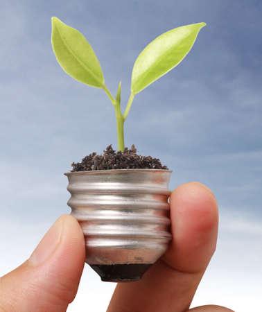 Ideas light bulb in the hand