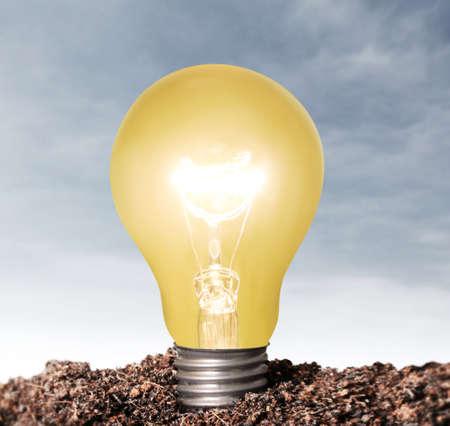 ideas, energy saving light bulb Stock Photo - 23545189