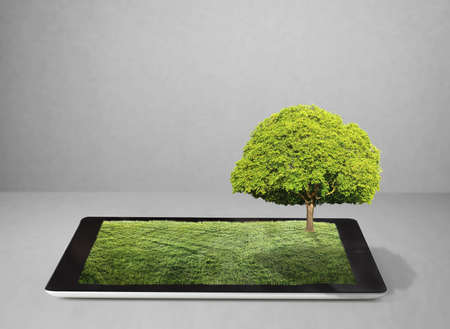 tablet on the white grass field and a tree photo