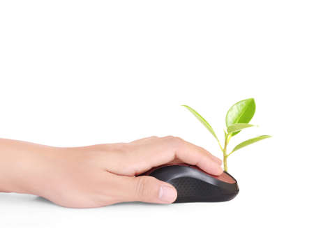 hands using a mouse with a plant photo