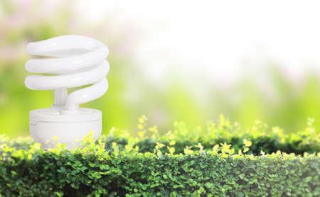 ideas, energy saving light bulb