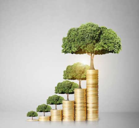 Concept of money tree growing from money Stok Fotoğraf