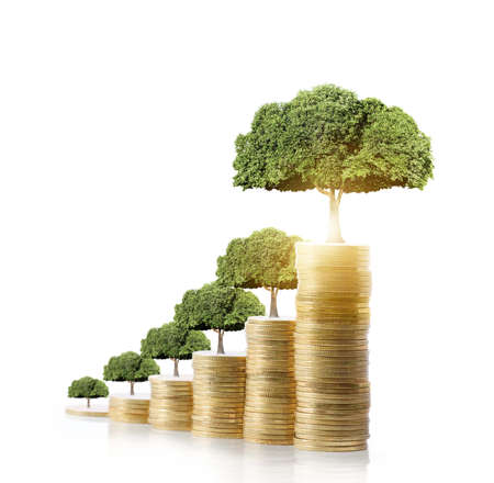 tree leaf: Concept of money tree growing from money Stock Photo