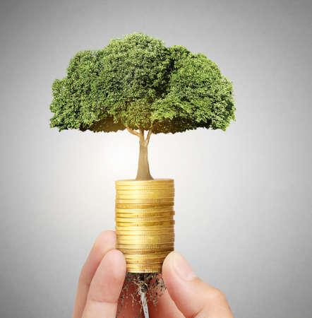Concept de l'arbre de l'argent de plus en plus de l'argent