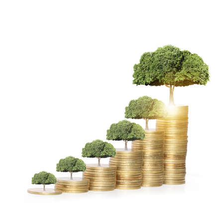 flower tree: Concept of money tree growing from money Stock Photo