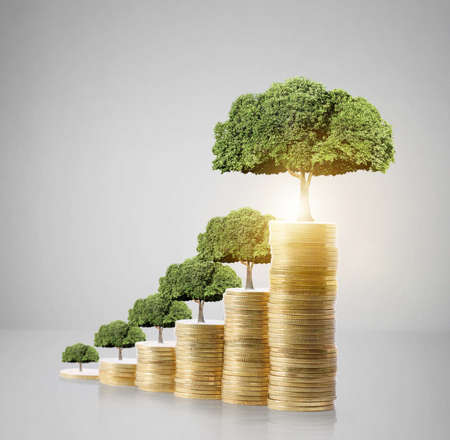 Concept of money tree growing from money Reklamní fotografie