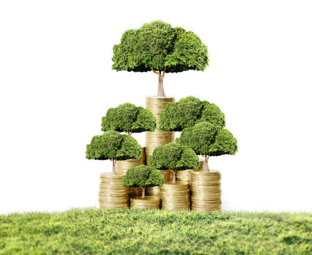Concept of money tree growing from money Imagens