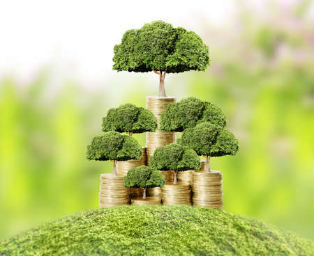 Concept of money tree growing from money photo