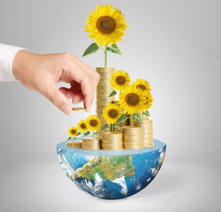 Flowers growing from a money,Some components of this image are provided courtesy of NASA photo
