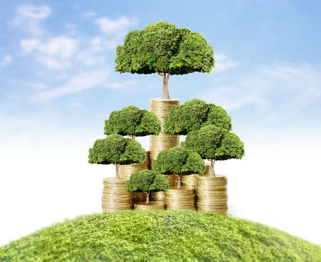 feuille arbre: Concept d'arbre d'argent de plus en plus de l'argent
