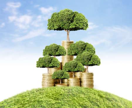 hojas de arbol: Concepto de �rbol de dinero cada vez mayor de dinero Foto de archivo