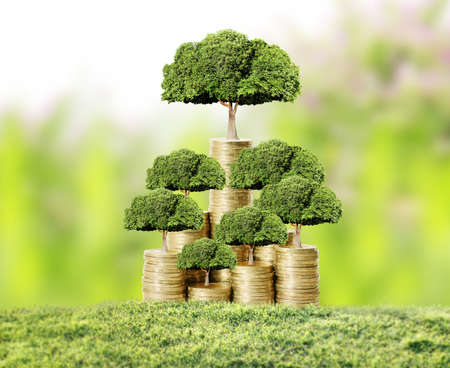 growing business: Concept of money tree growing from money Stock Photo