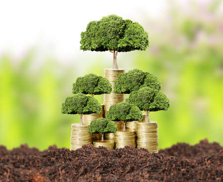 money pounds: Concept of money tree growing from money Stock Photo