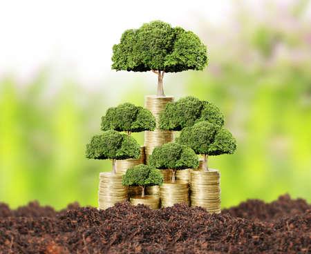 Concept of money tree growing from money Standard-Bild