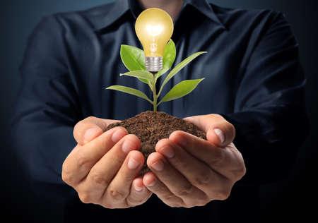 energy saving: Bombilla de bajo consumo, Idea creativa bombilla en la mano Foto de archivo