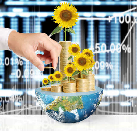 provided: Flowers growing from a money,Some components of this image are provided courtesy of NASA