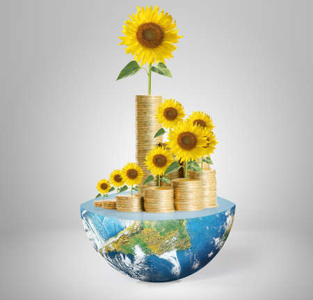 Flowers growing from a money,Some components of this image are provided courtesy of NASA