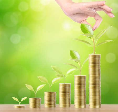 money plant: Concept of money tree growing from money Stock Photo