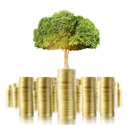 small tree: Concept of money tree growing from money Stock Photo