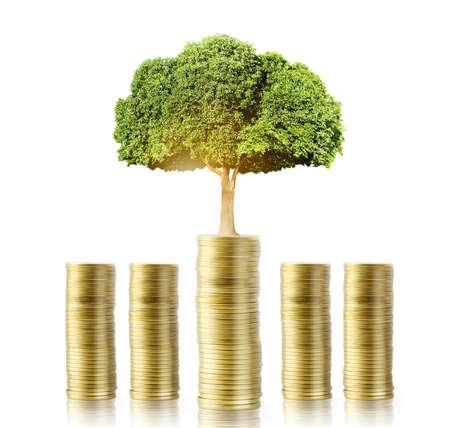 金のなる木のお金からの成長の概念