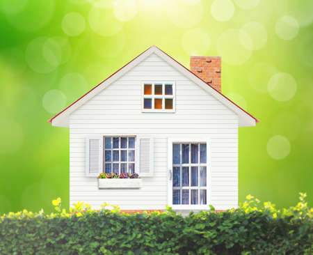 Mortgage concept, House in green field