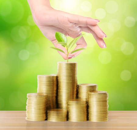 capital gains: Hand holding young green plant and coins money, Money growing concept Stock Photo