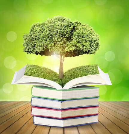 libros abiertos: Libros de magia Abiertas