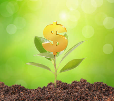 rural development: Money growing on tree, Dollar signs