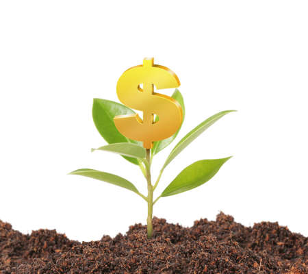 bank branch: Money growing on tree, Dollar signs