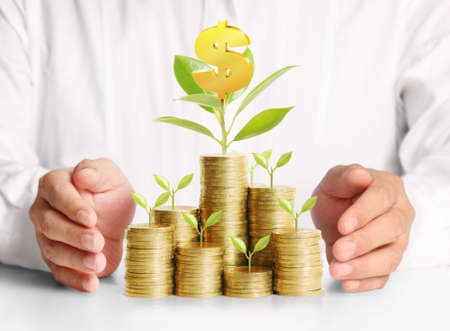 banking concept: Concept of money growing from the coins